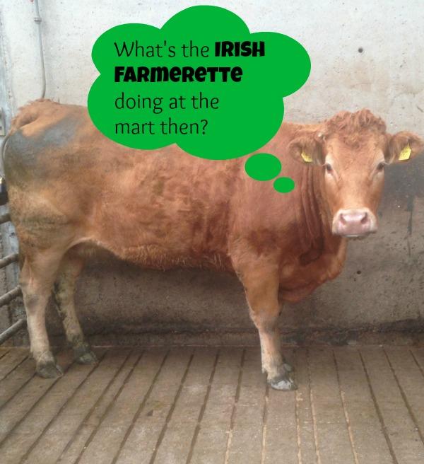 Irish Farmerette at Mart